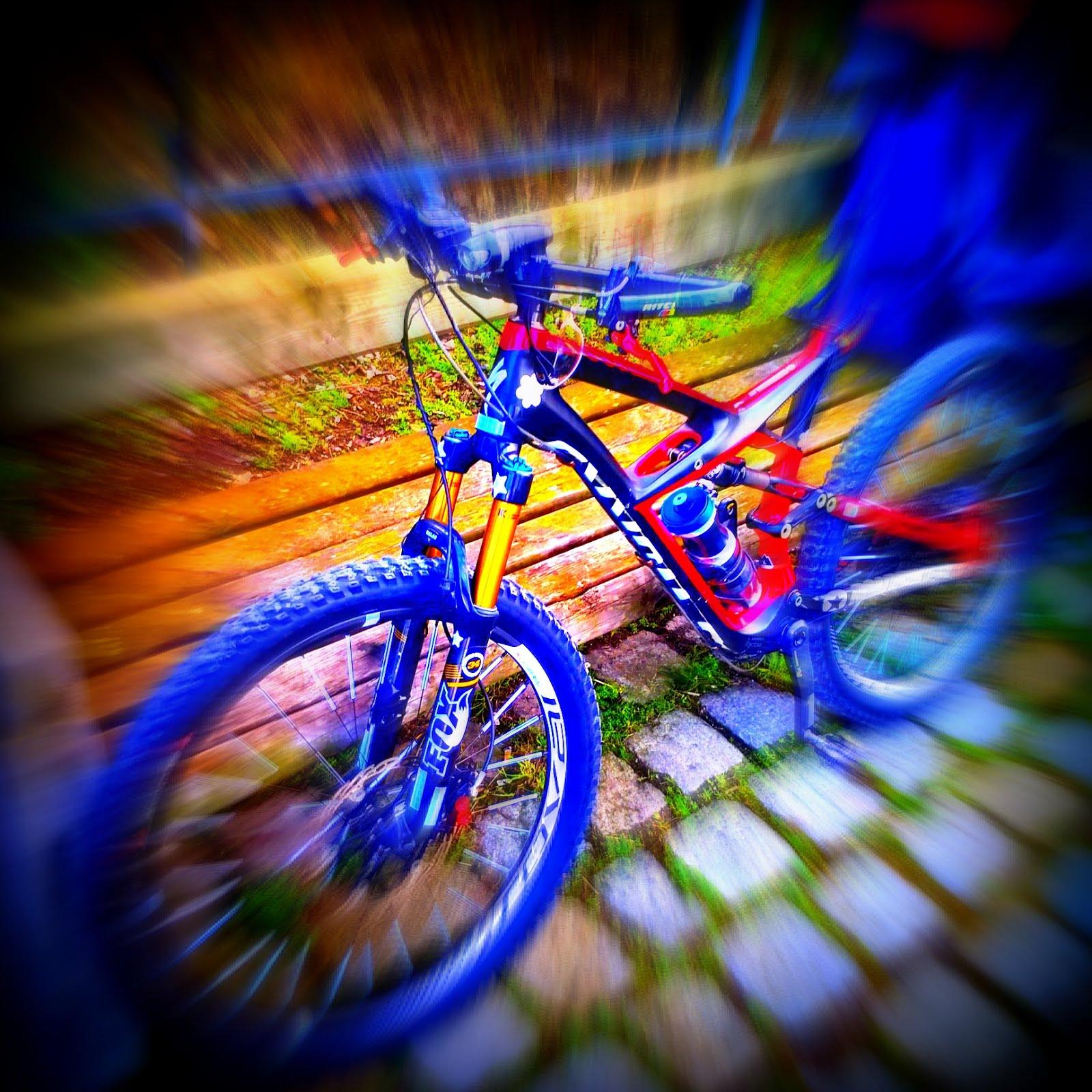 Vom Fahrrad aus, Philosophie, Mobilität, Grünes Denken, Welt, Leben, Körper