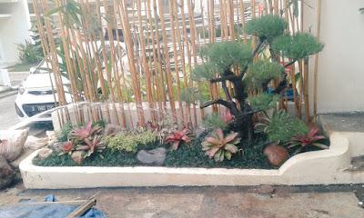 Tukang Taman Kebon Pedes Bogor - SuryaTaman
