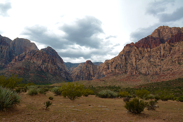 Hiking; Red Rock Canyon | My Darling Days
