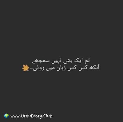 Tum aik bhi nahi samjhe ankh kes kes zuban mai roi