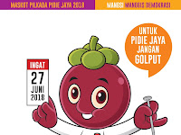 Hasil Quick Count Pilkada Pidie Jaya 2018/2019