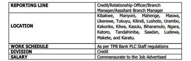 Clerks | Jobs in Tanzania on job opportunity, job applications you can print, job vacancy, job requirements, job advertisement, cv form, contact form, job openings, job applications online, job payment receipt, job resume, job letter, agreement form, cover letter form, employee benefits form, job search,