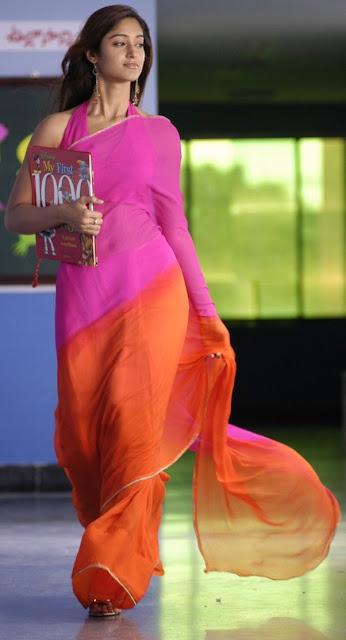 Ileana D'cruz In Full Sari