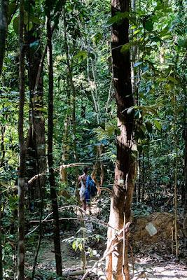 Thailande-Koh-Lanta-Khlong-jaak-waterfall