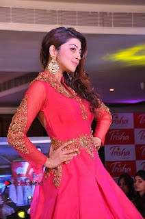 South Indian Celebrities Pos at Love For Handloom Collection Fashion Show  0012.jpg