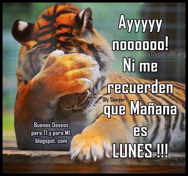 Ayyyyyy noooooooooo!  Ni me recuerden que Mañana es LUNES !!!