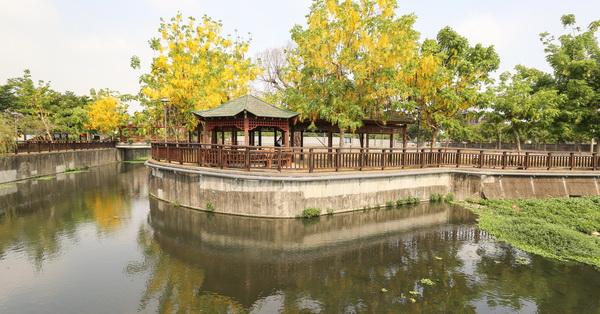 台中南屯|公93公園|江南風情的公園|阿勃勒盛開|滯洪池像座牧場