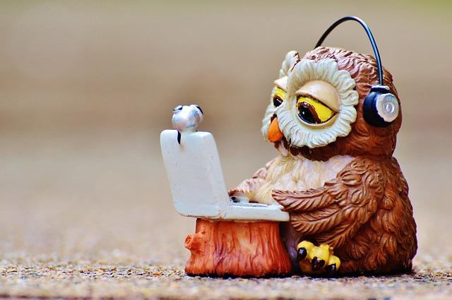 パソコンを操作するフクロウ