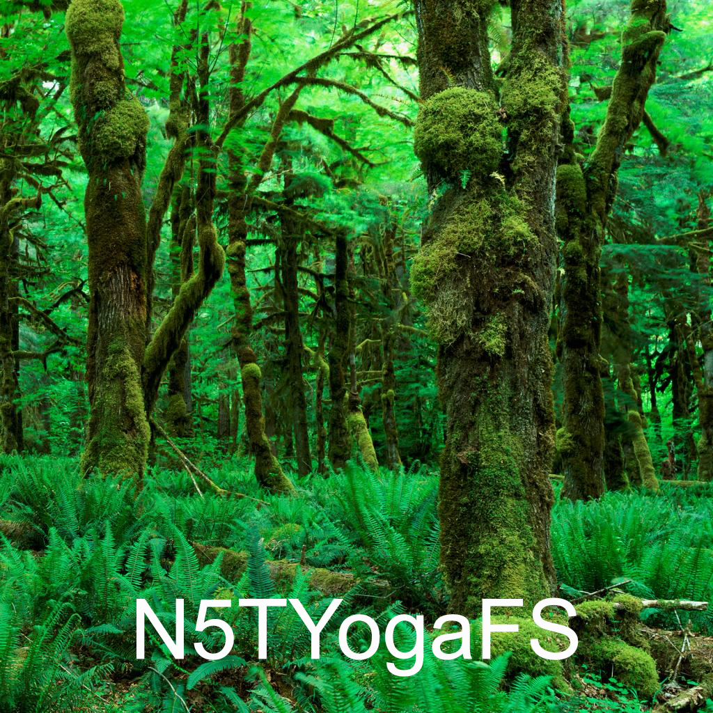 N5TYogaFS - Forest sounds for yoga | iKeyword Asia - Share Source Code