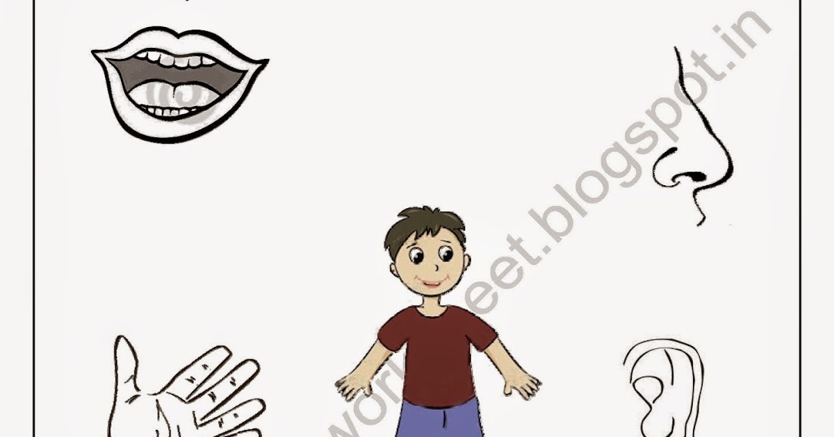 Download PDF Free for Nursery kids Match the body parts worksheet-2