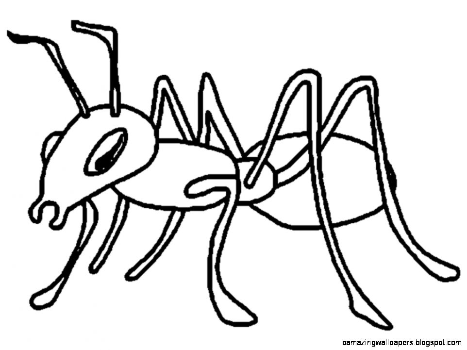 free ant clipart black and white - photo #9