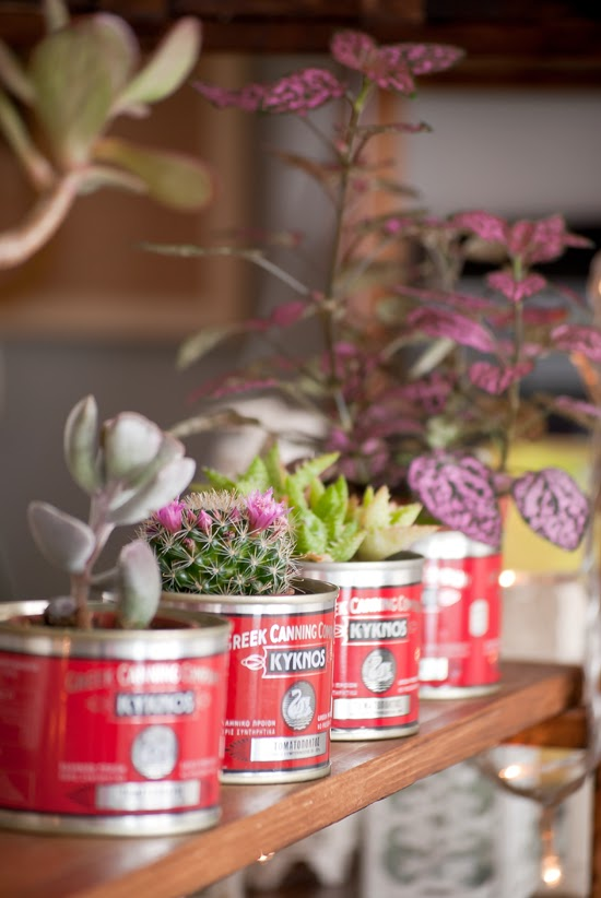 Reclaimed tin can planters by myparadissi.com ©Eleni Psyllaki