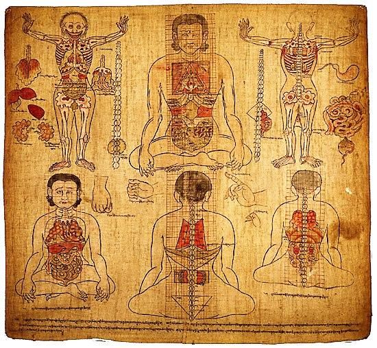 Old Tibetan Medicine painting of anatomy