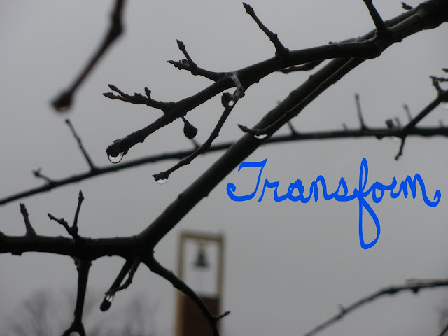 Word of the Year 2017: Transform