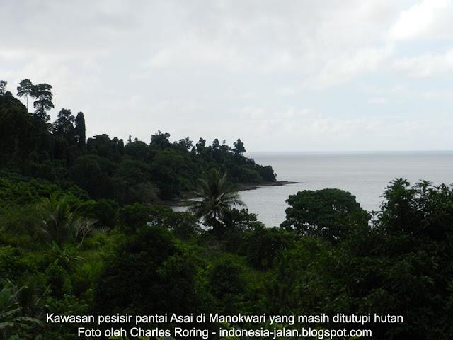 Berwisata ke Manokwari, Papua Barat