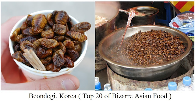 Beondegi, Korea- top 20 of bizarre asian food