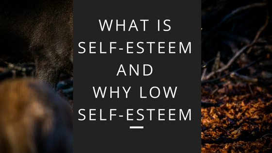 What is Self-Esteem and Why Low Self-Esteem by Mr Great Inspiration