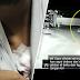(Video) 'Mereka curi harta paling saya sayang' - Lelaki cuba pertahankan motosikalnya ditetak bertubi-tubi