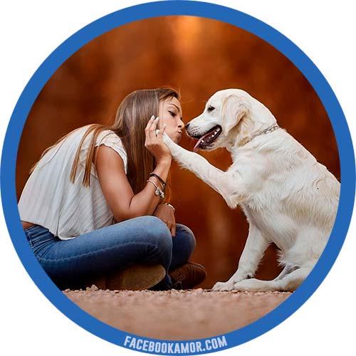 bonitas imágenes de amistad para perfil