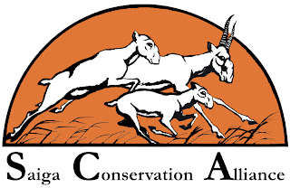Saiga Conservation Alliance logo
