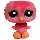 Littlest Pet Shop Large Playset Owl (#1641) Pet