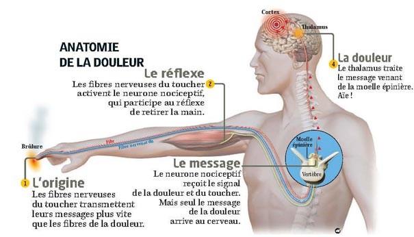 Le massage médical aux lumbago et le cou