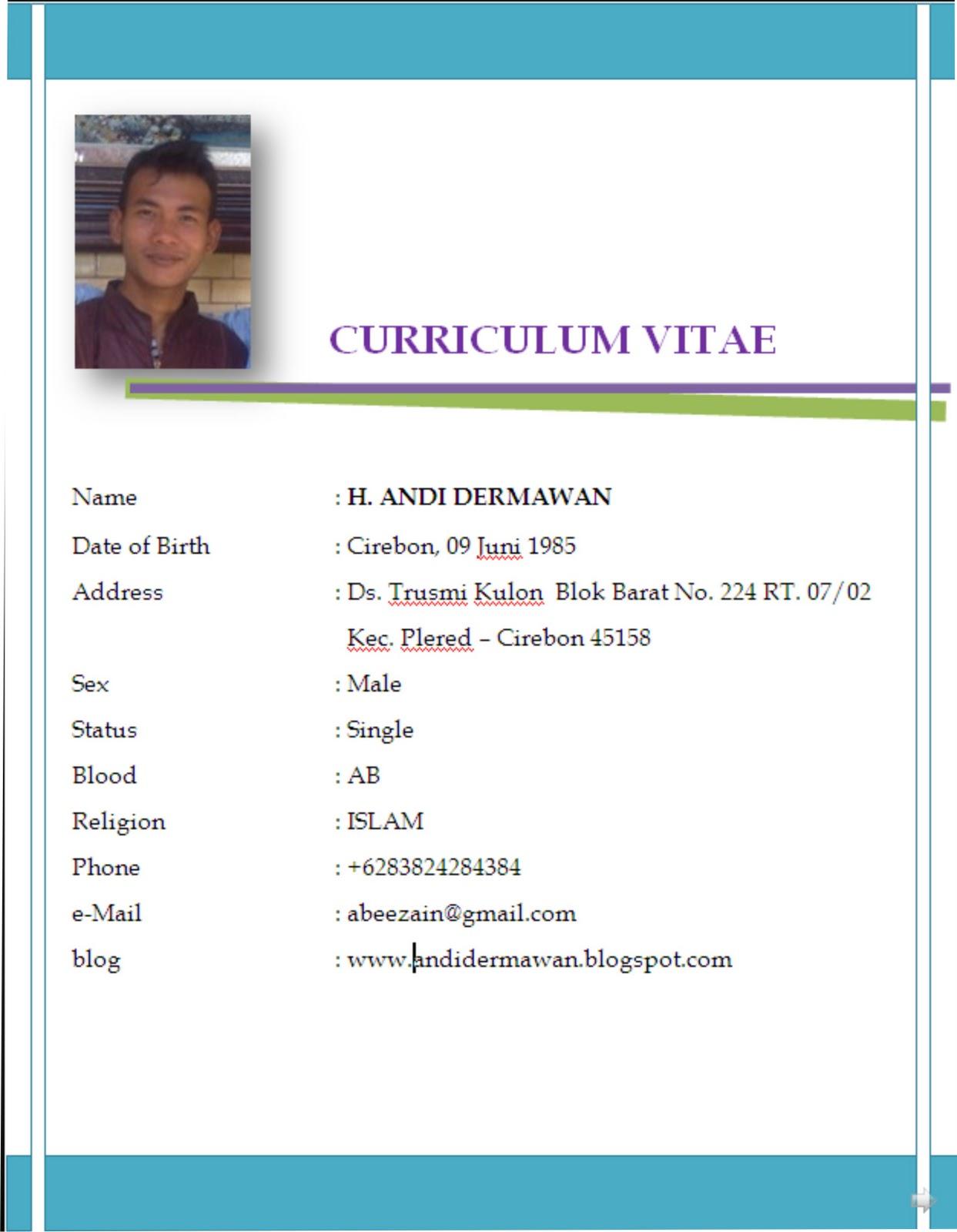 Contoh Curriculum Vitae Pdf Download Template