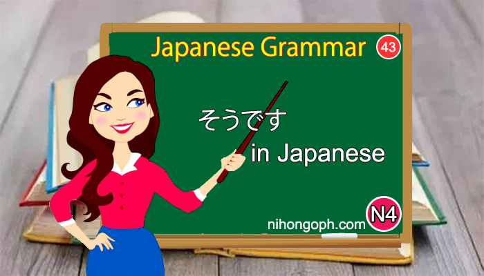 Japanese Language N4 Level: そうです in Japanese (N43)