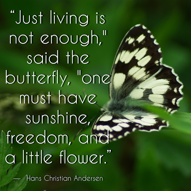 """Just living is not enough"", said the butterfly, ""one must have sunshine, freedom, and a little flower."" - Hans Christian Andersen"