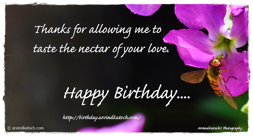 Nectar, Love, Happy Birthday, Birthday Card,