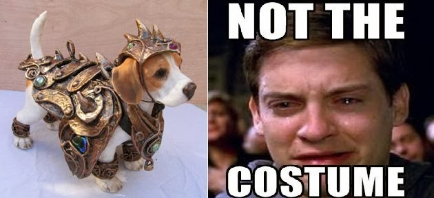 Dog cosplay and Peter Parker Spider-man meme