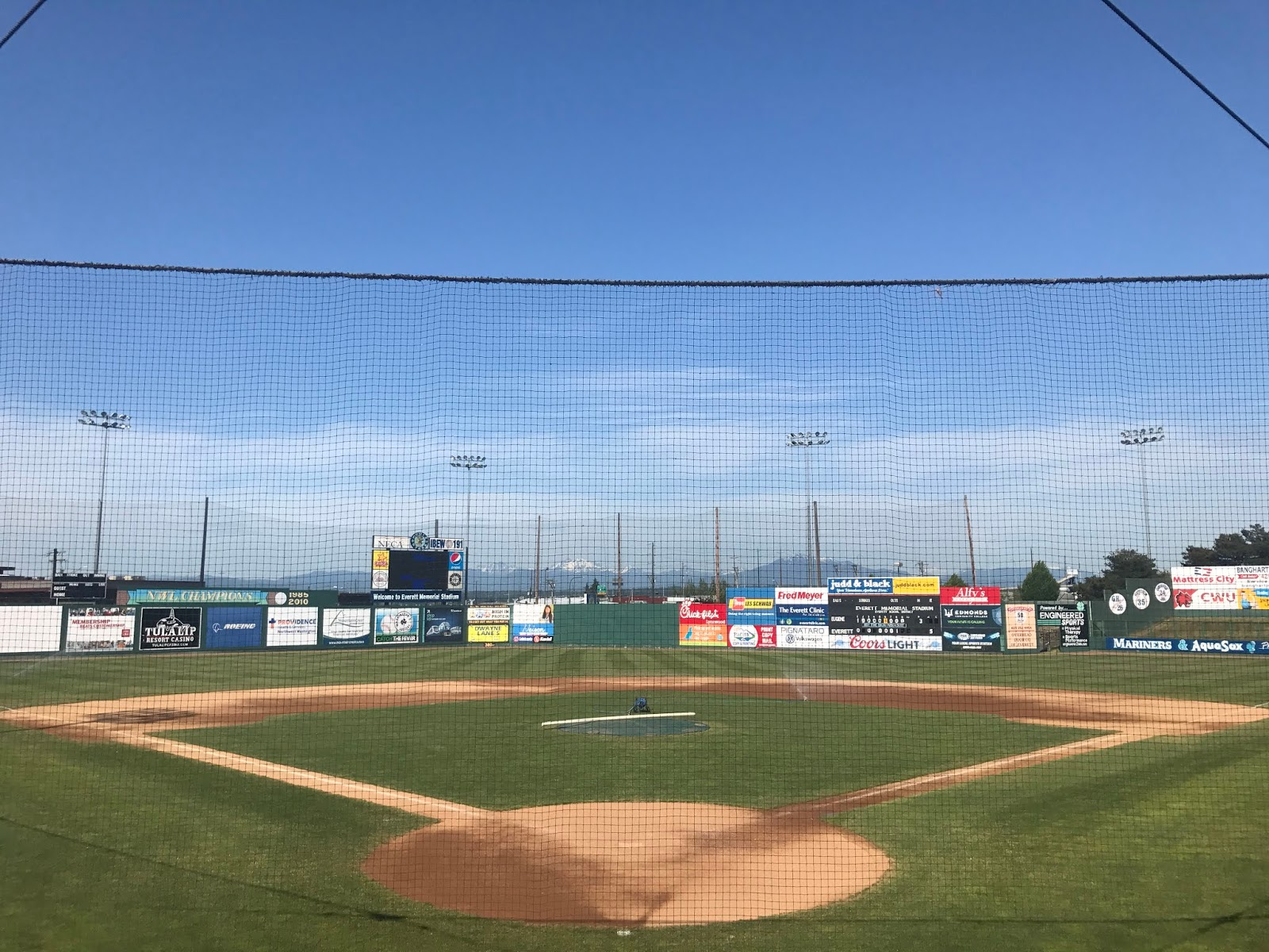 Northwest League Everett Aquasox