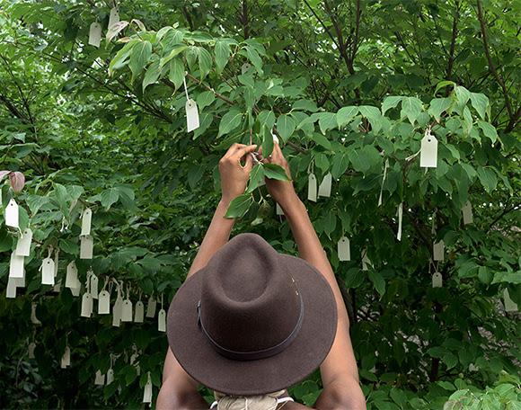 L'arbre à souhaits de Yoko Ono fleurit à Washington