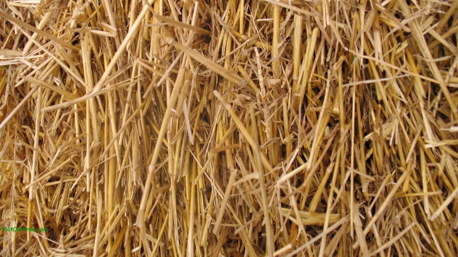 Pellet Mill Brief Introduction Of Straw Pellet Mill