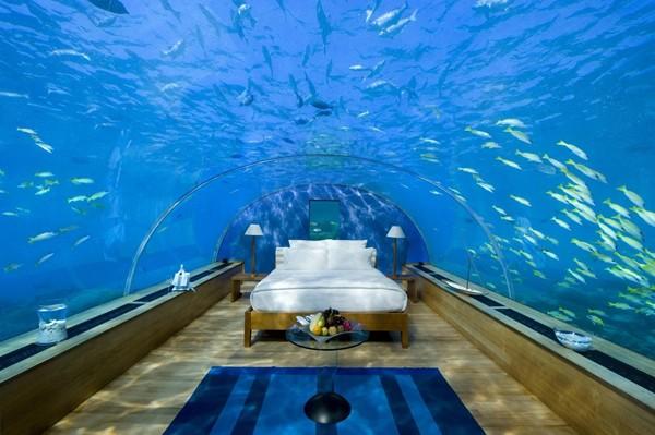 Bilik Tidur Aquarium Desainrumahid