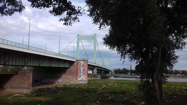 le pont de Cologne bord du rhin - voyage en camping-car