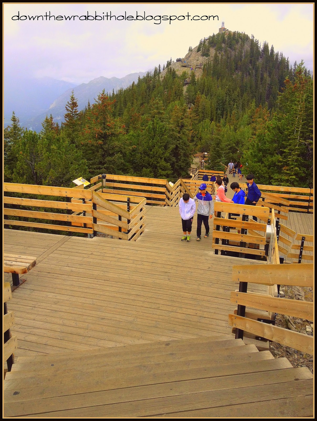 Sanson Peak hike, Banff Gondoloa, things to do in Alberta