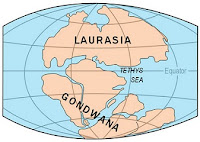 Gondwanaland and Laurasia