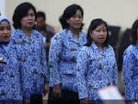 Info Terbaru !! Batas Usia Pendaftar CPNS 2018 Maksimal 40 Tahun Sedang Dikaji