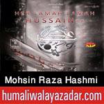 http://www.humaliwalayazadar.com/2015/06/mohsin-raza-hashmi-nohay-2016.html