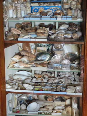 Cabinet of curiosities in the Library of A la Ronde