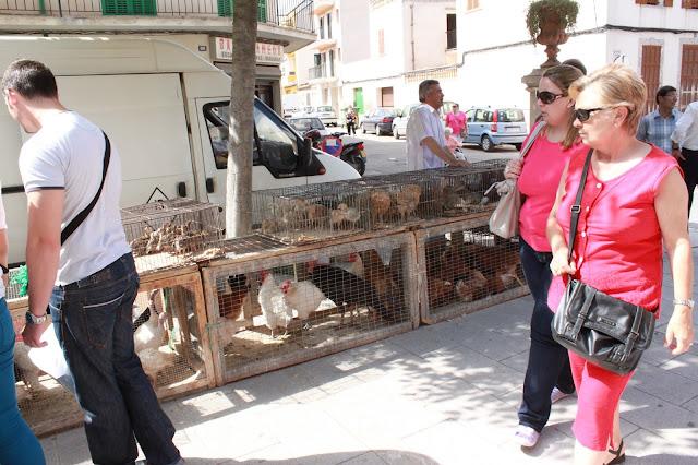 Tiermarkt auf Mallorca