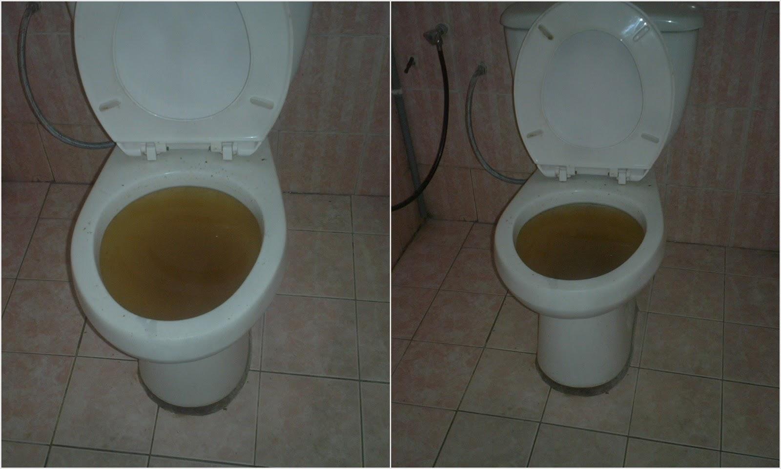 Normal Plumbing Tandas Tersumbat
