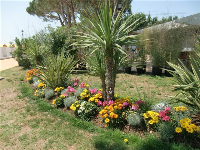 Blumenschmuck Grado - Blog Topfgartenwelt