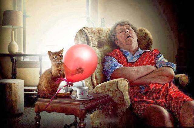 Funny Cat Sleeping Woman Balloon Alarm Painting