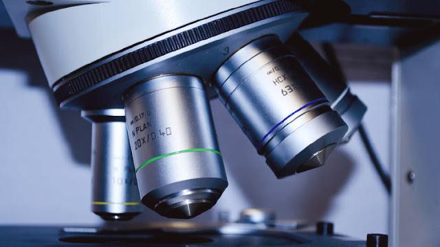 """""""Materia oscura microbiana"""": descuben nuevas formas de vida """"invulnerables"""""""