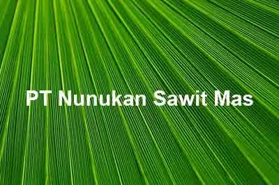 Lowongan Kerja PT Nunukan Sawit Mas, lowongan kerja Kaltara Oktober Nopember Desember 2019 Januari februari Maret April Mei Juni 2020