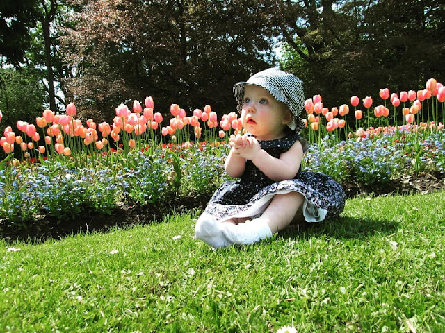 Scarlet at 11 and 12 months old - Us Two Plus You - Amongst the flowers with her interest in Nature