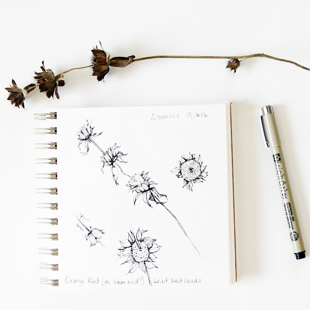 sketchbook, micron, nature, botanical sketchbook, drawing, Anne Butera, My Giant Strawberry