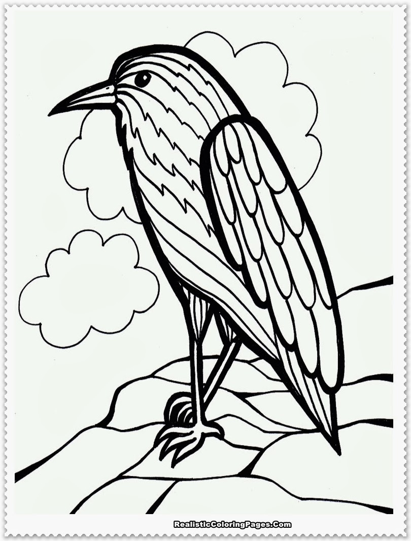 bird coloring pages - photo#26